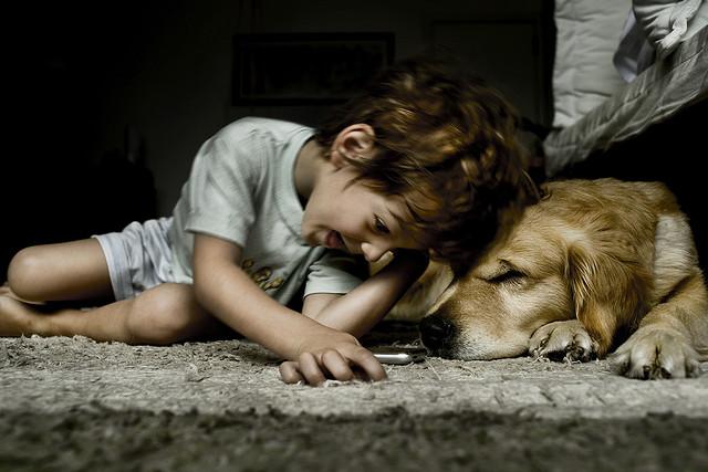 Niños y mascotas: Las responsabilidades acordes a cada edad