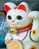 Los ídolos de nuestras mascotas: gatos famosos