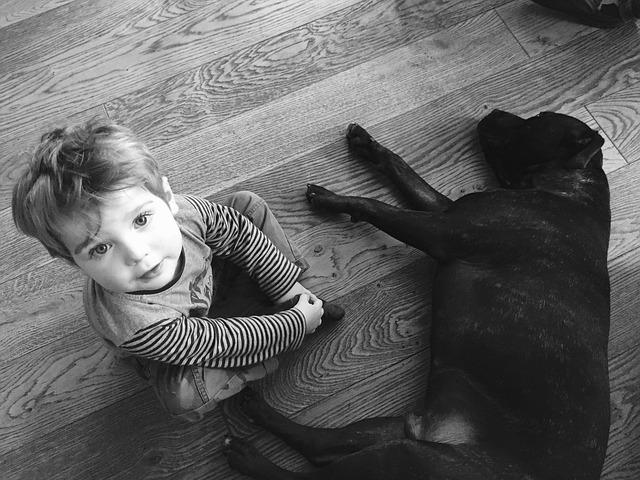¿Por qué tu hijo debería de tener un perro?