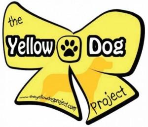 Yellow Proyect
